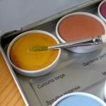 Naturfarbe Wilder Safran gelb