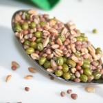 ein Löffel Samen