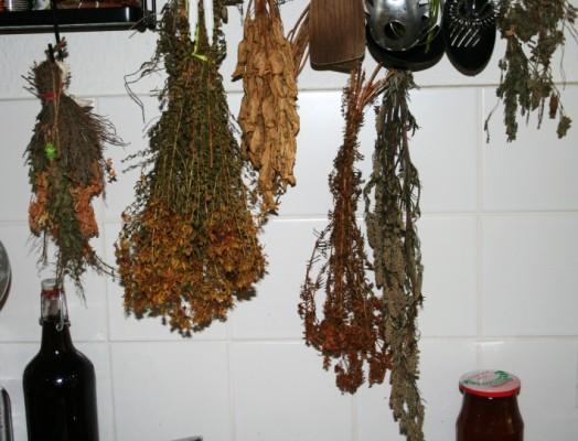 getrocknete Kräuter