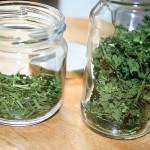 getrocknete Kräuter im Glas