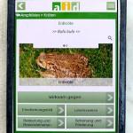aid App Nützling Erdkröte