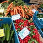 Regionales Gemüse, Radieschen, Möhren, Gurken...