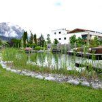 Naturteich vor Alpenkulisse