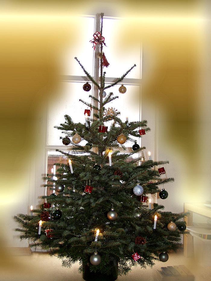 Ikea weihnachtsbaum echt