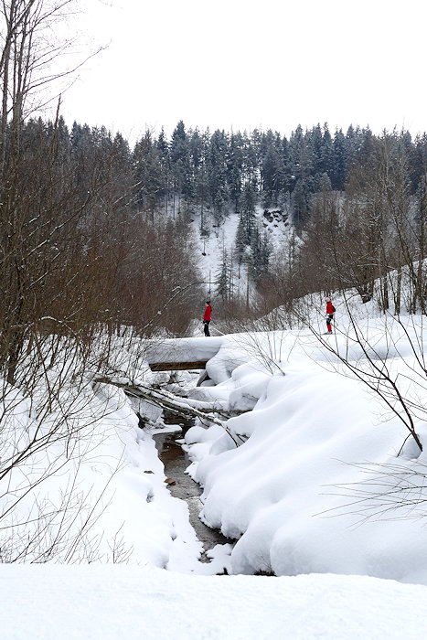 Ski laufen in Ramsau
