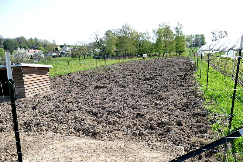 ein von Schweinen frisch umgepflügtes Feld